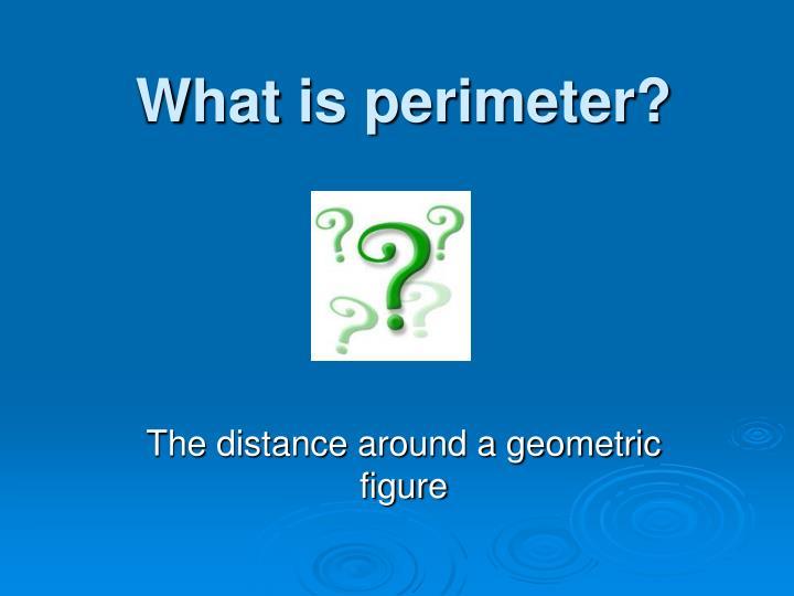 What is perimeter