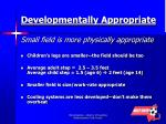 developmentally appropriate small field is more physically appropriate