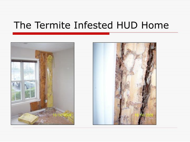 The Termite Infested HUD Home