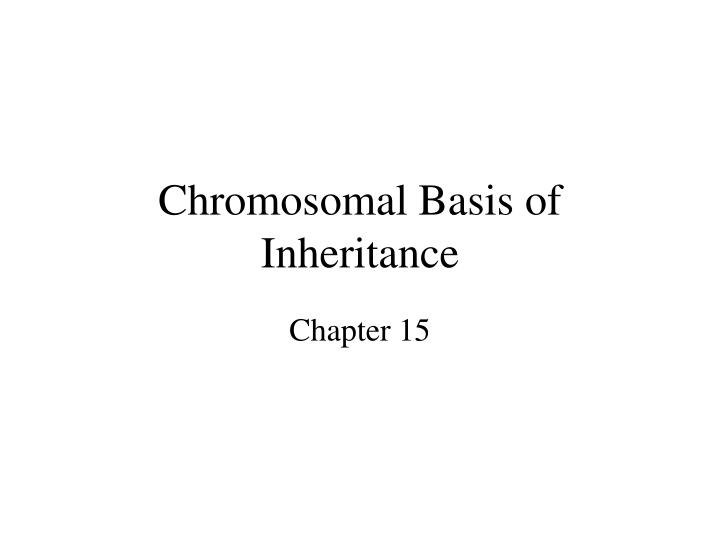 chromosomal basis of inheritance n.