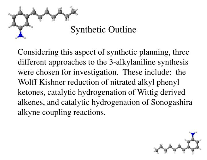Synthetic outline