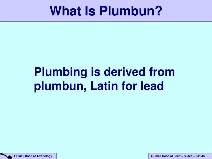 What is plumbun