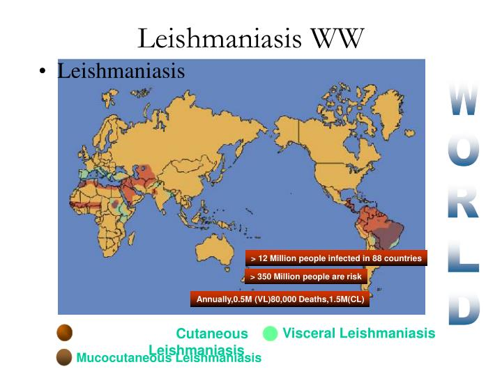 Leishmaniasis WW