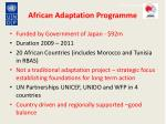 african adaptation programme