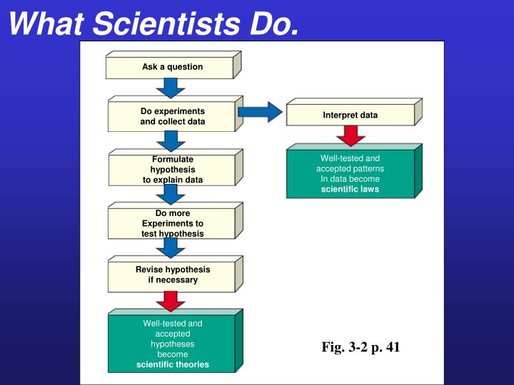 What Scientists Do.