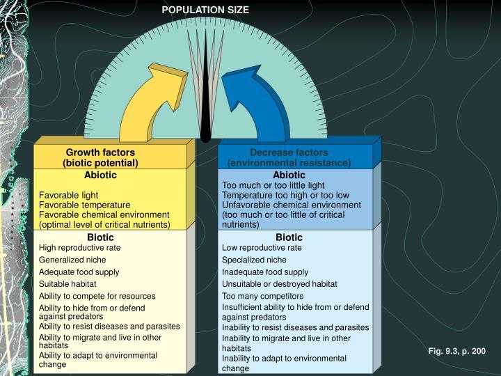 POPULATION SIZE