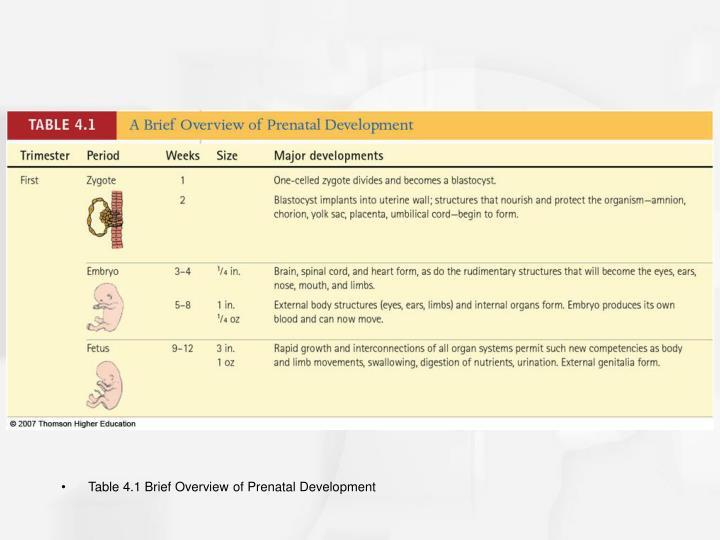 Table 4.1 Brief Overview of Prenatal Development