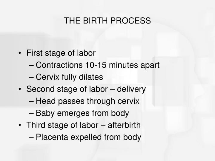 THE BIRTH PROCESS