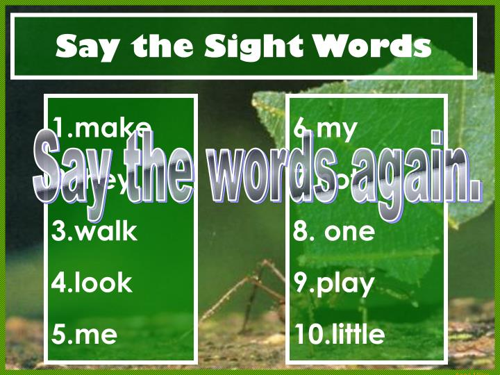 Say the Sight Words