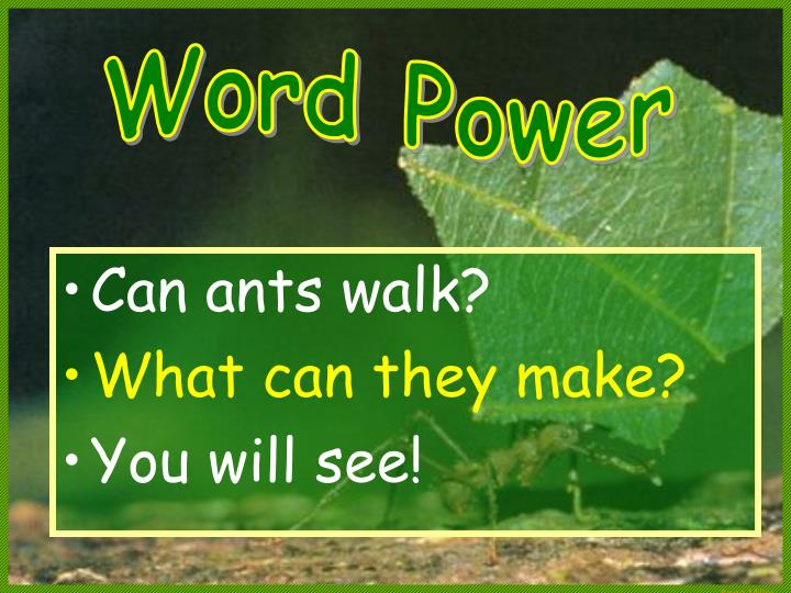 Can ants walk?