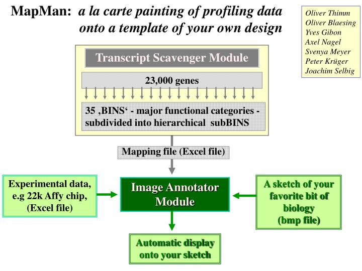 Mapman a la carte painting of profiling data onto a template of your own design