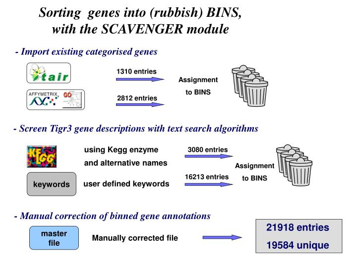 Sorting genes into rubbish bins with the scavenger module