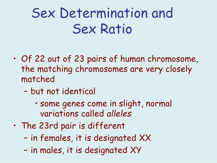 Sex Determination and Sex Ratio