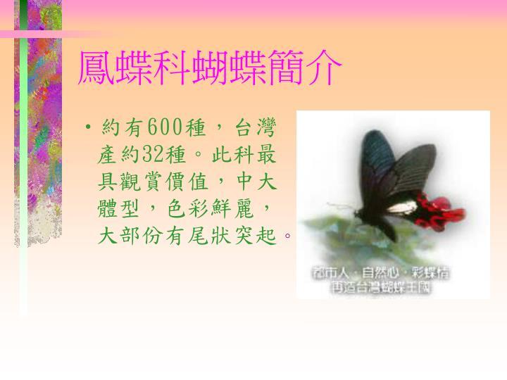 約有600種,台灣產約32種。此科最具觀賞價值,中大體型,色彩鮮麗,大部份有尾狀突起