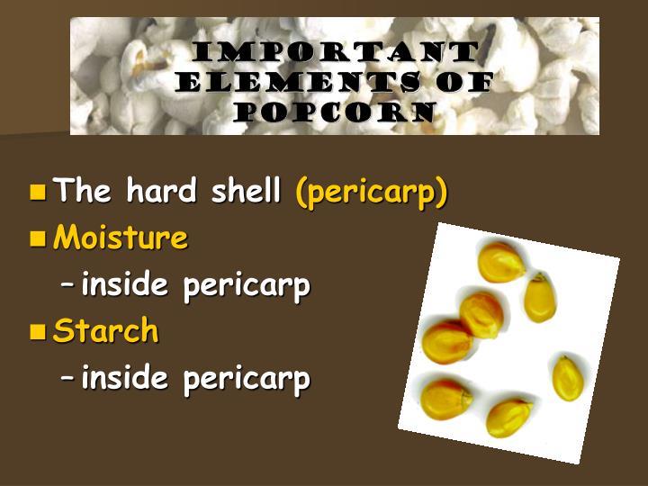Important elements of popcorn