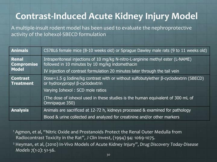 Contrast-Induced Acute Kidney Injury Model