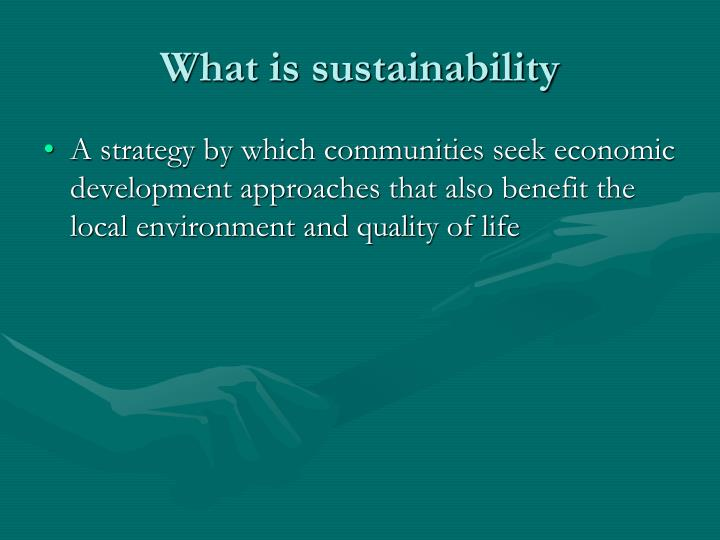 what is sustainability n.