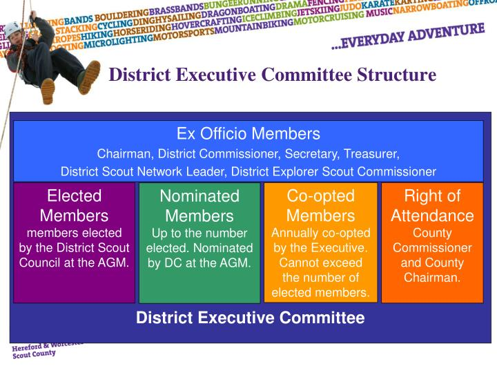 District Executive Committee Structure