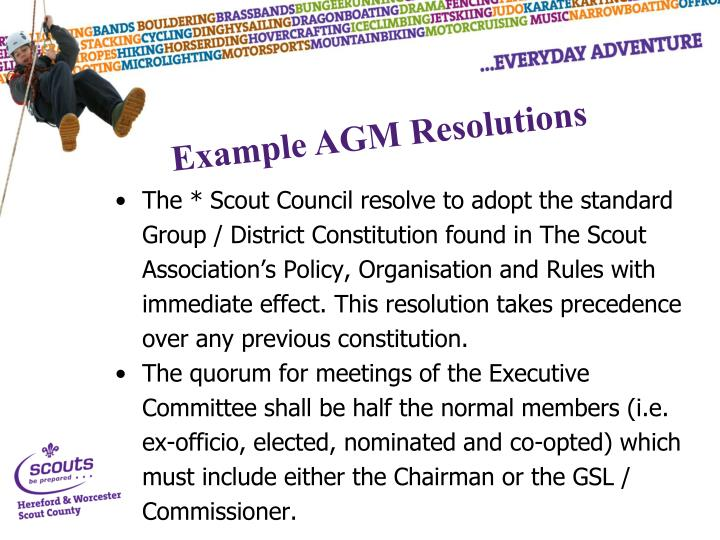 The * Scout Council resolve to adopt the standard Group / District Constitution found in The Scout Association's Policy, Organisation and Rules with immediate effect. This resolution takes precedence over any previous constitution.