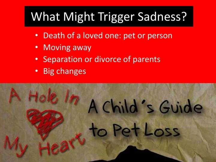 What Might Trigger Sadness?