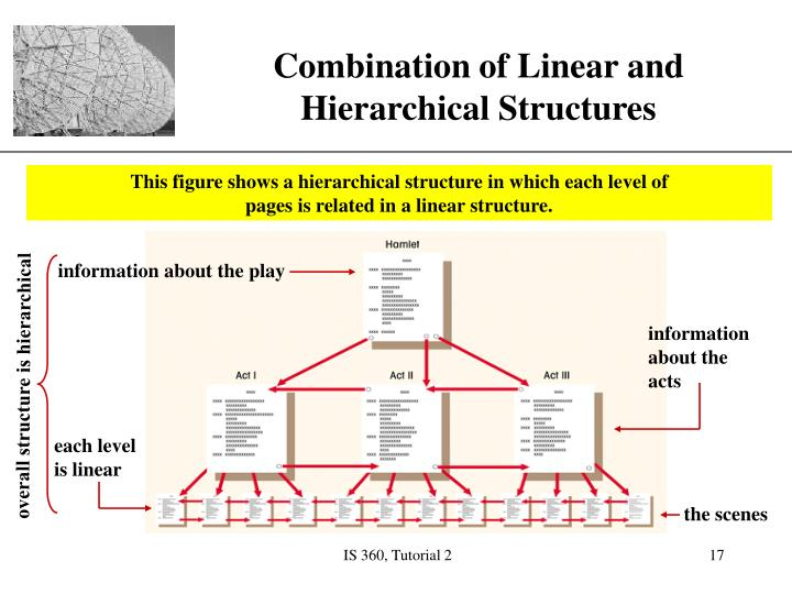 This figure shows a hierarchical structure in which each level of