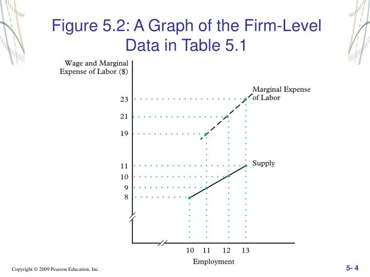 Figure 5.2: A Graph of the Firm-Level    Data in Table 5.1
