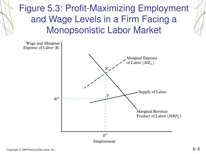 Figure 5.3: Profit-Maximizing Employment and Wage Levels in a Firm Facing a Monopsonistic Labor Market