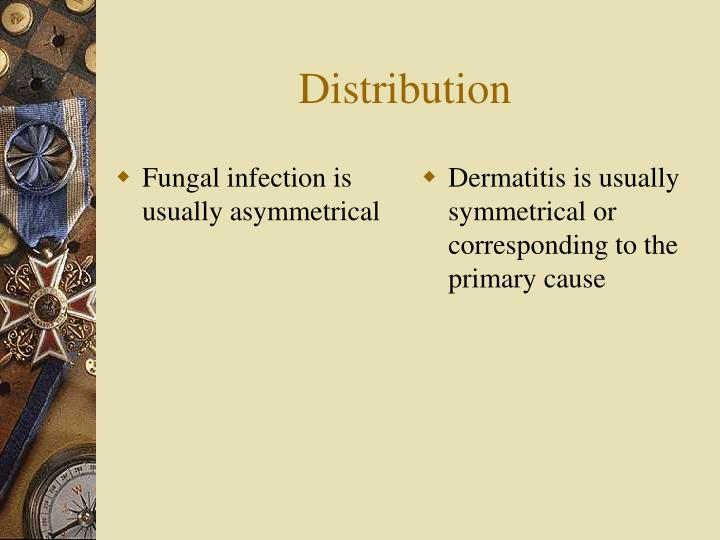 Fungal infection is usually asymmetrical