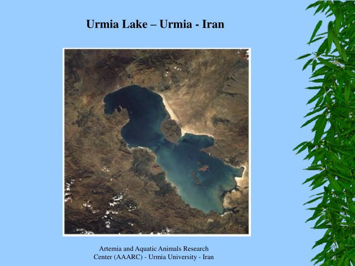 Urmia Lake – Urmia - Iran