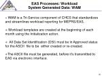 eas processes workload system generated data wam