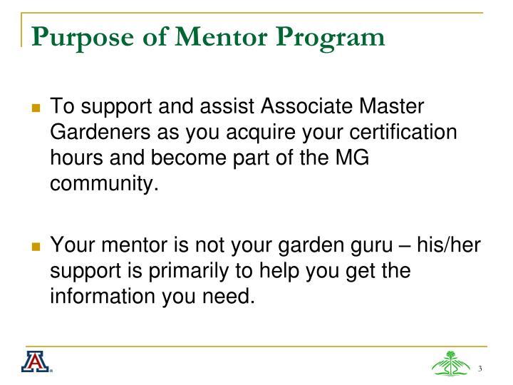 Purpose of mentor program