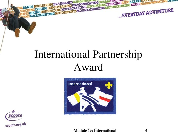 International Partnership Award