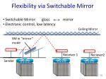 flexibility via switchable mirror