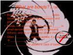 what are bonds p 736