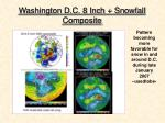 washington d c 8 inch snowfall composite1