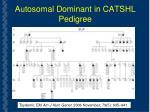 autosomal dominant in catshl pedigree
