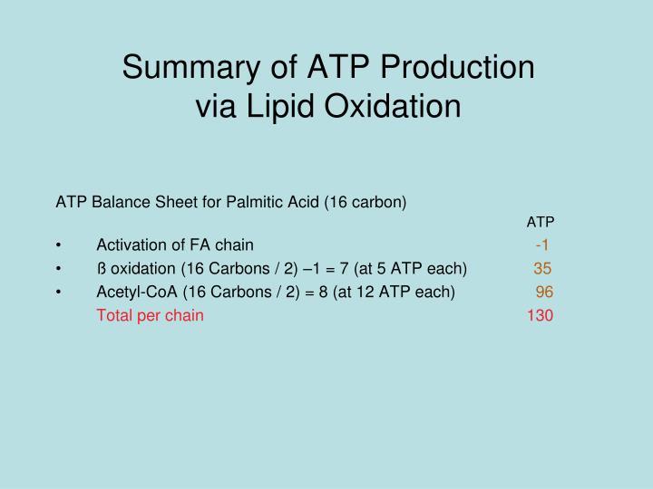 Summary of ATP Production