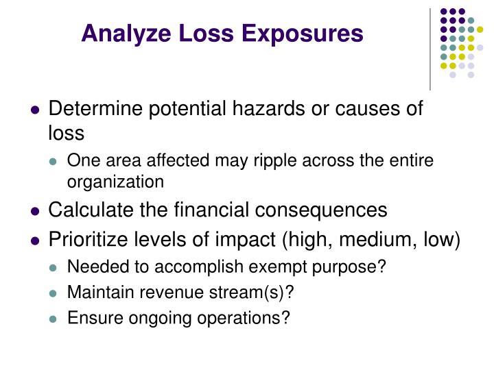 Analyze Loss Exposures