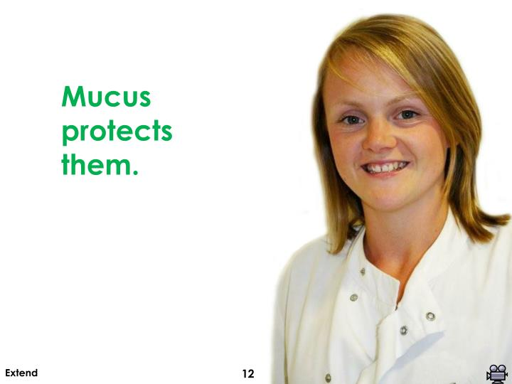 Mucus protects them.