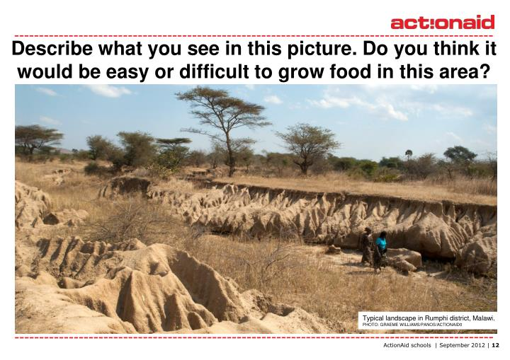 Describe what you see in this picture. Do you think it would be easy or difficult to grow food in this area?