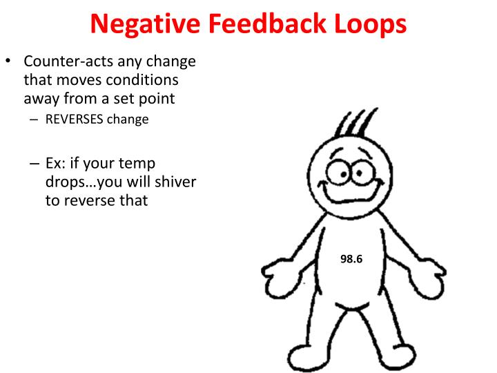 Negative Feedback Loops