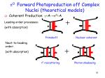 0 forward photoproduction off complex nuclei theoretical models