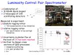 luminosity control pair spectrometer