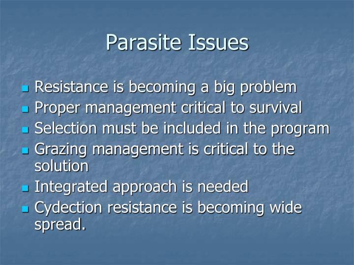 Parasite issues