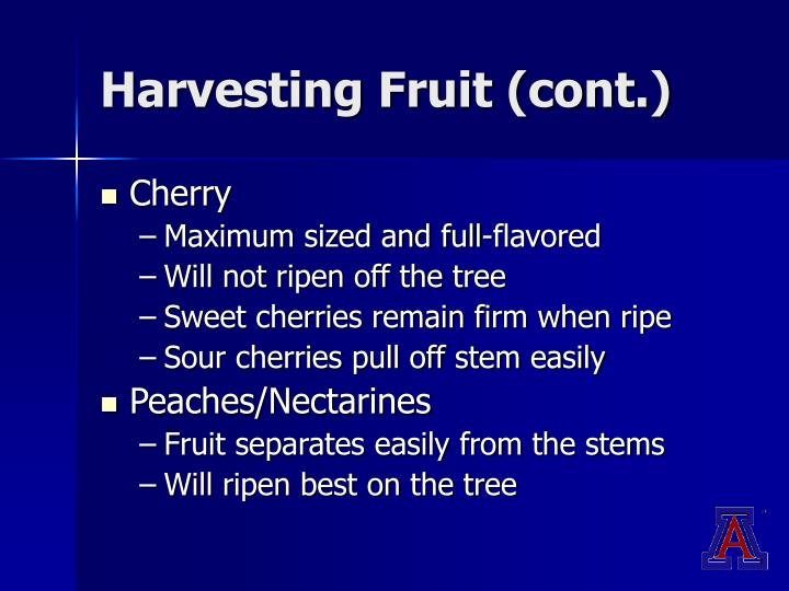 Harvesting Fruit (cont.)