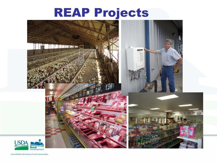REAP Projects