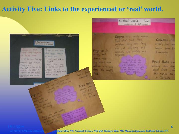 Activity Five: Links to the experienced or 'real' world.