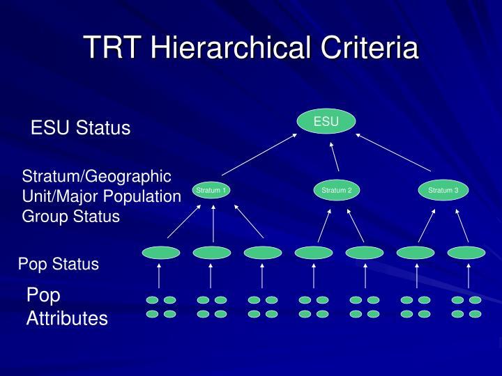 Trt hierarchical criteria