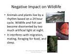 negative impact on wildlife