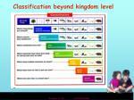 classification beyond kingdom level